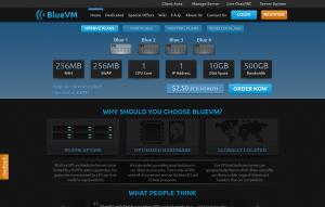 BlueVM