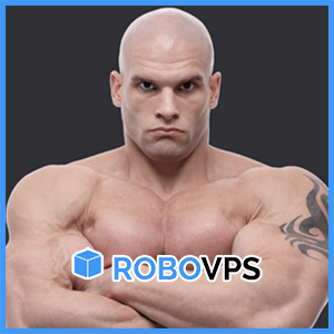RoboVPS: Ruble-Denominated VMs in Germany or the Netherlands from $1.67/mo!